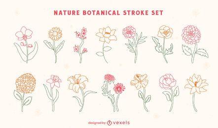 Conjunto de arte botânica de flores e natureza