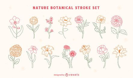 Conjunto de arte de línea botánica de naturaleza de flores