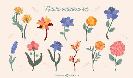 Flores naturaleza jardín colorido conjunto
