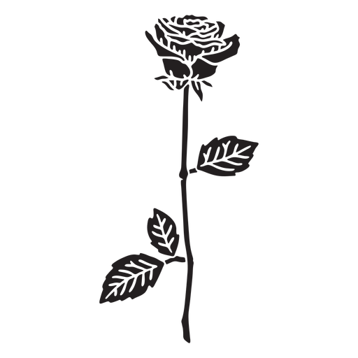 Rose single flower cut out