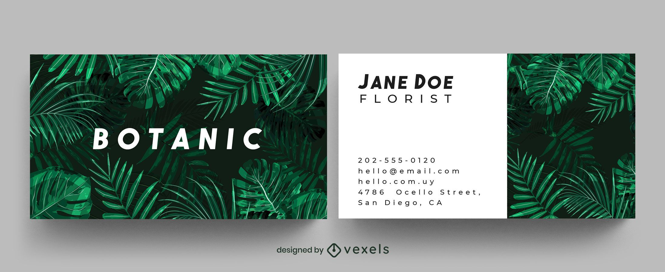 Diseño de tarjeta de visita de selva botánica.