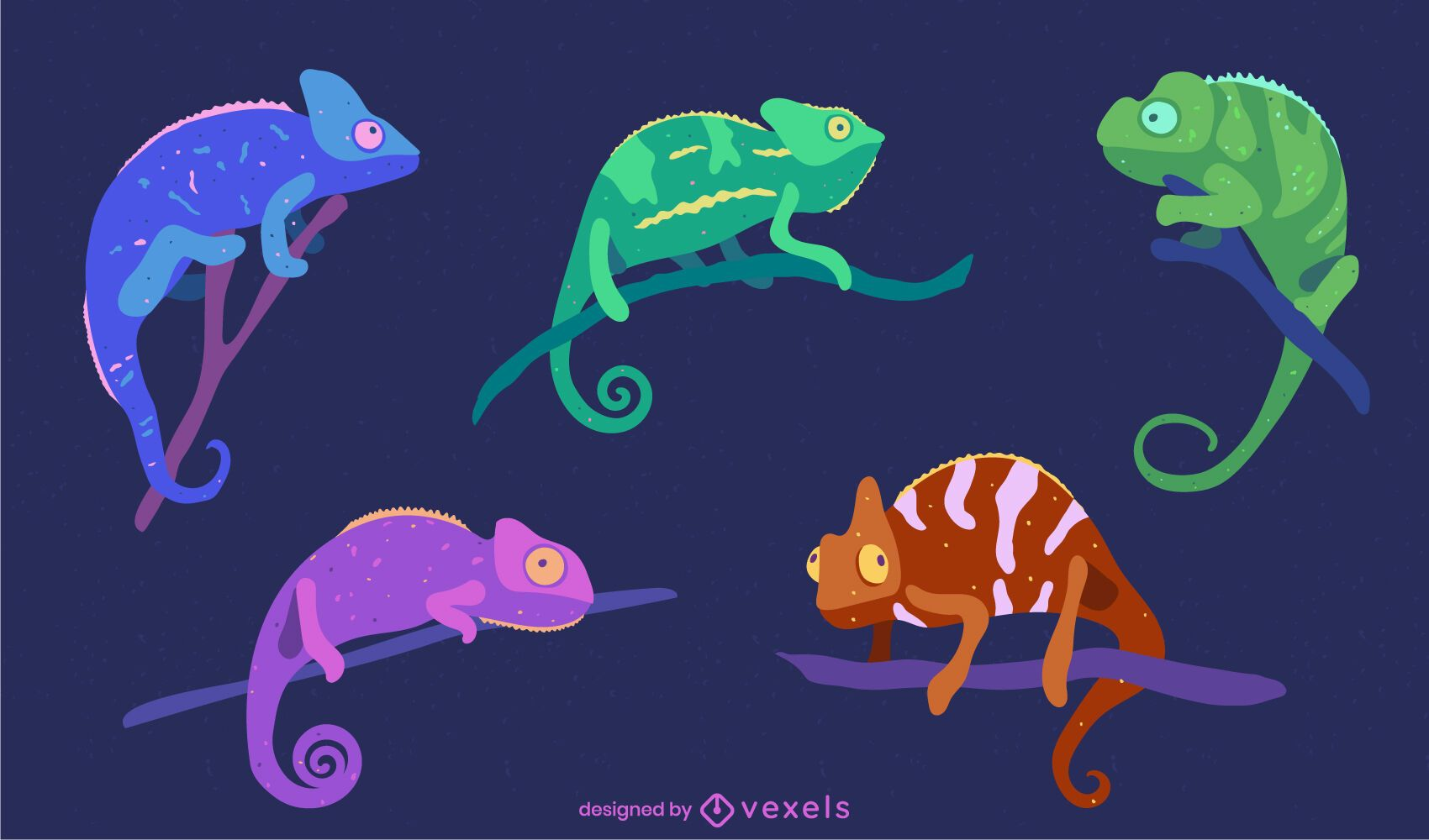 Pacote de animais de camaleões coloridos