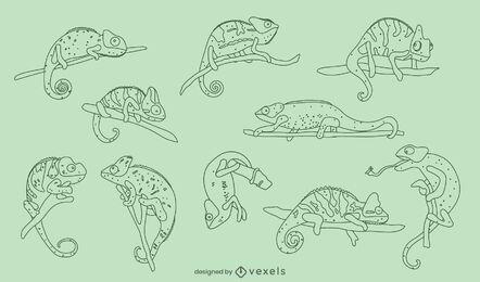 Chameleon reptiles animal nature pack