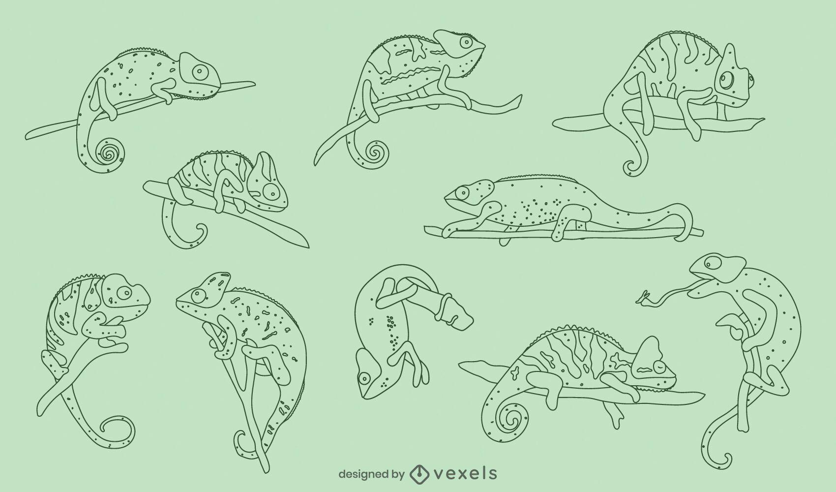 Pacote de natureza animal répteis camaleões