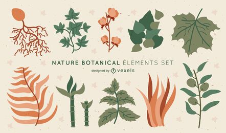 Botanical leaves nature elements set