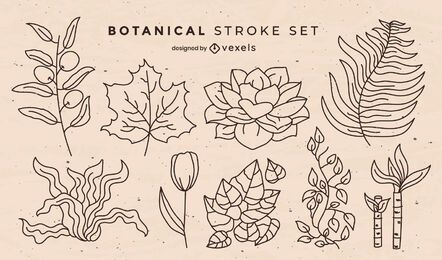 Botanical leaves nature elements stroke set