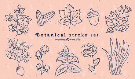 Conjunto de pinceladas naturais de flores e folhas botânicas