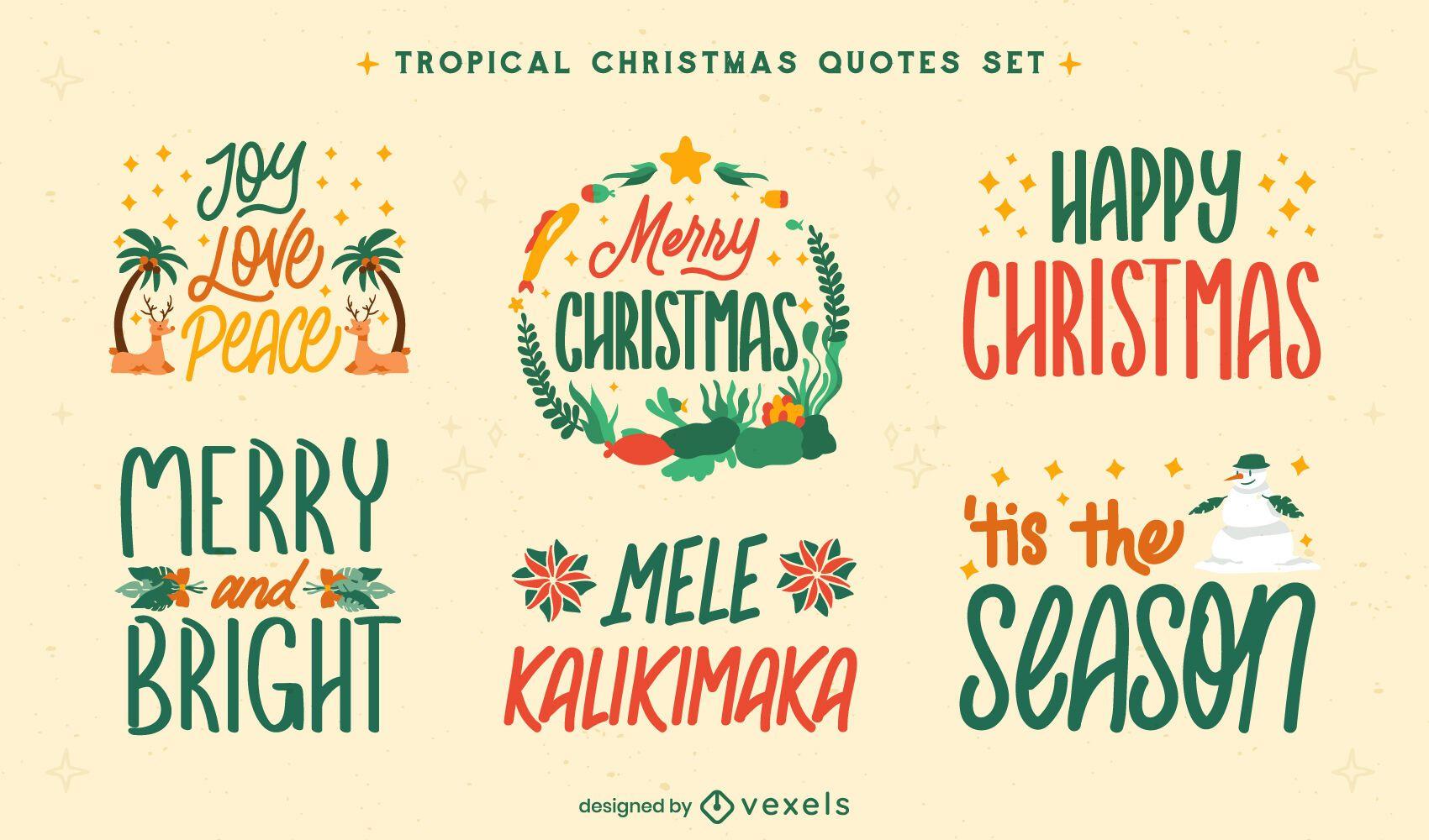 Conjunto de insignias de vacaciones navideñas tropicales