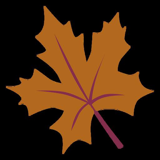 Autumn maple leaf flat