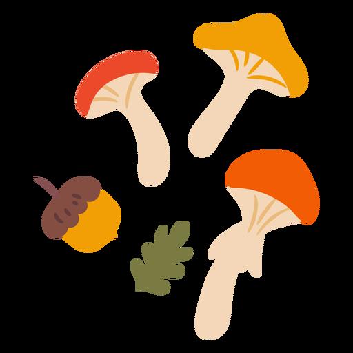 Wild mushrooms flat