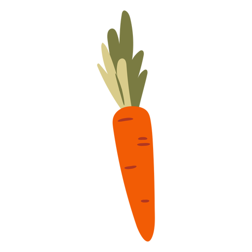 Orange carrot semi flat