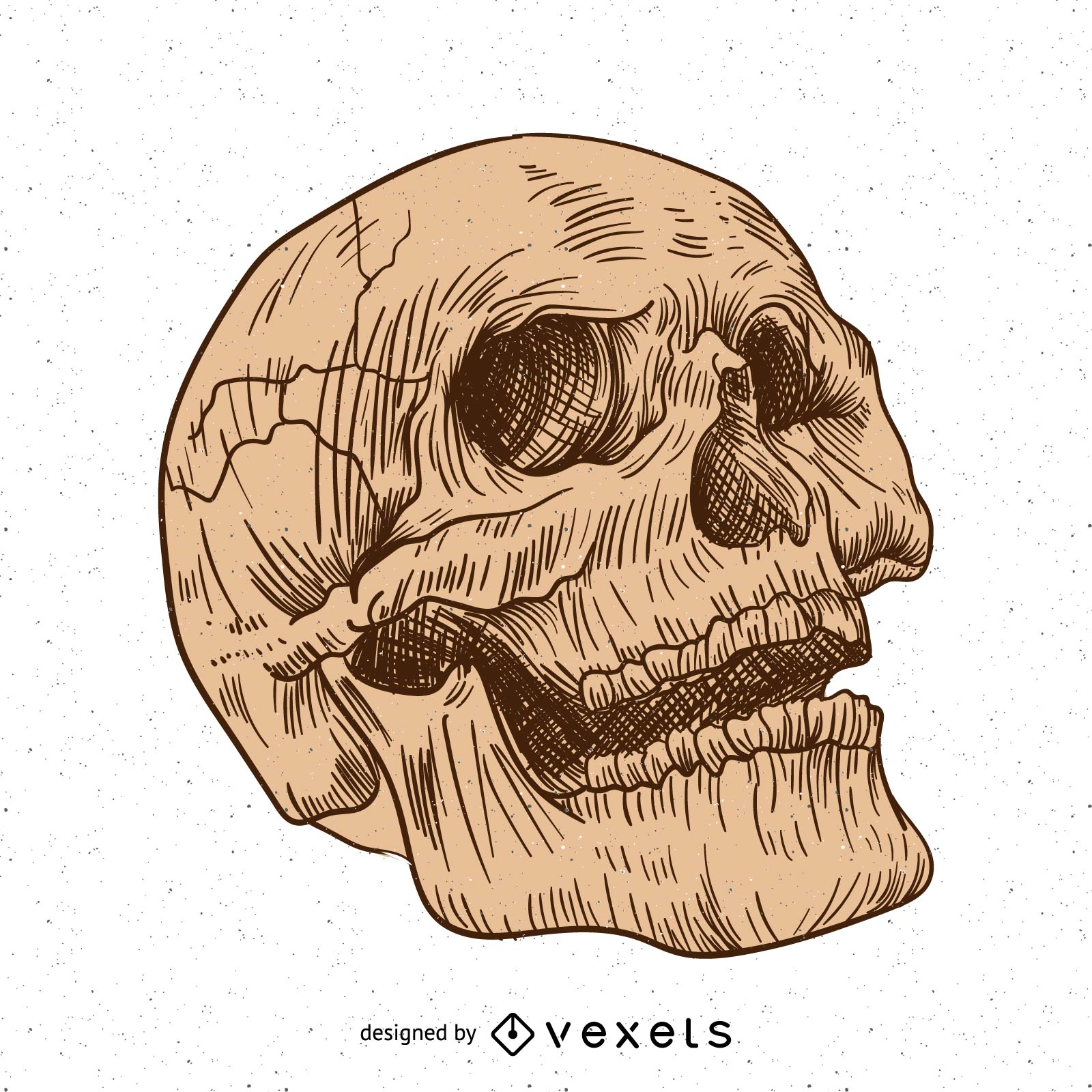 Artistic hand drawn skull design
