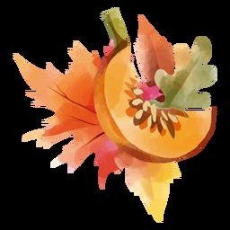 Cantaloupe fall design watercolor