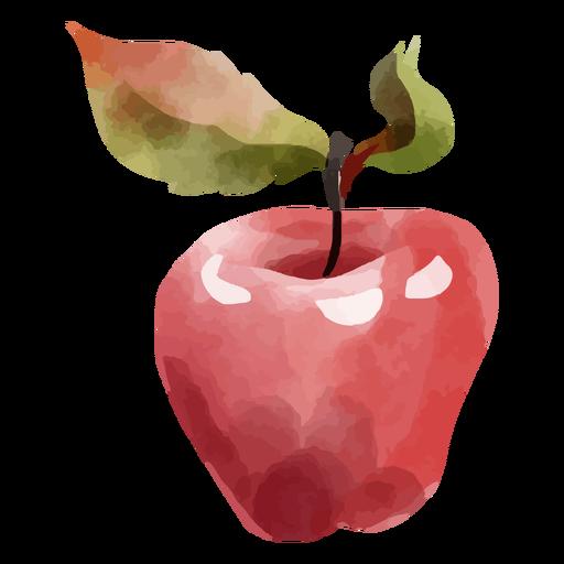 Red apple fruit watercolor