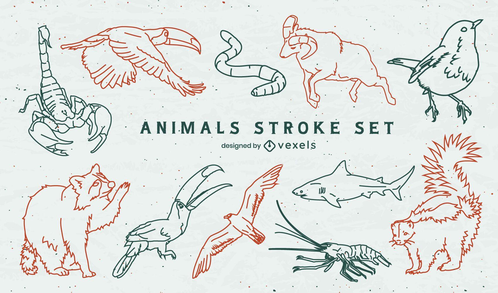 Conjunto de braçadas de animais selvagens transparentes