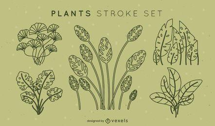 Conjunto de traços de folhas simples