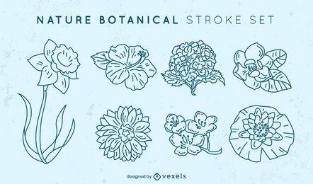 Beautiful set of stroke flowers