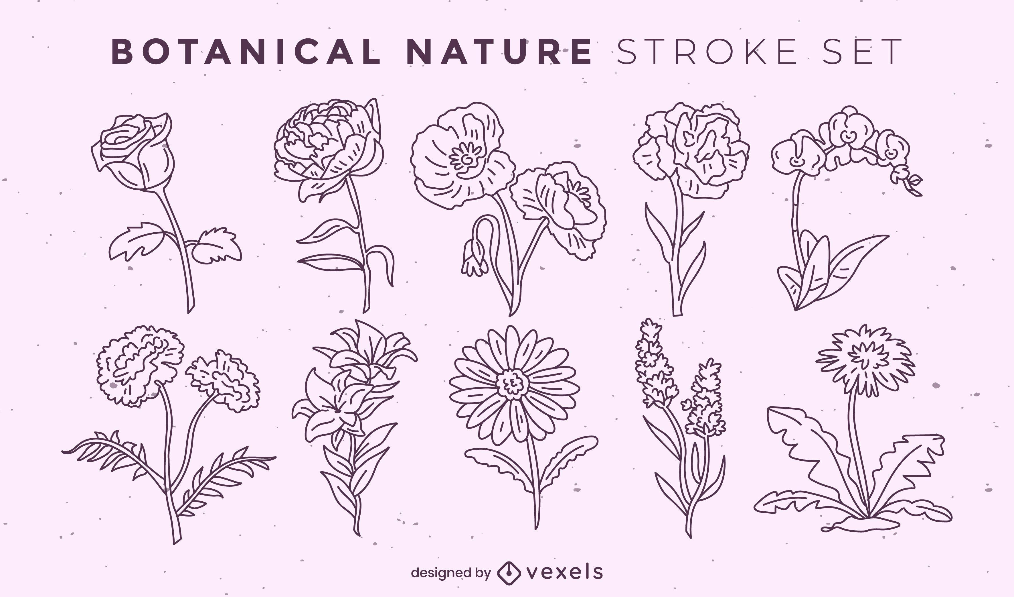 Set of beautiful stroke flowers
