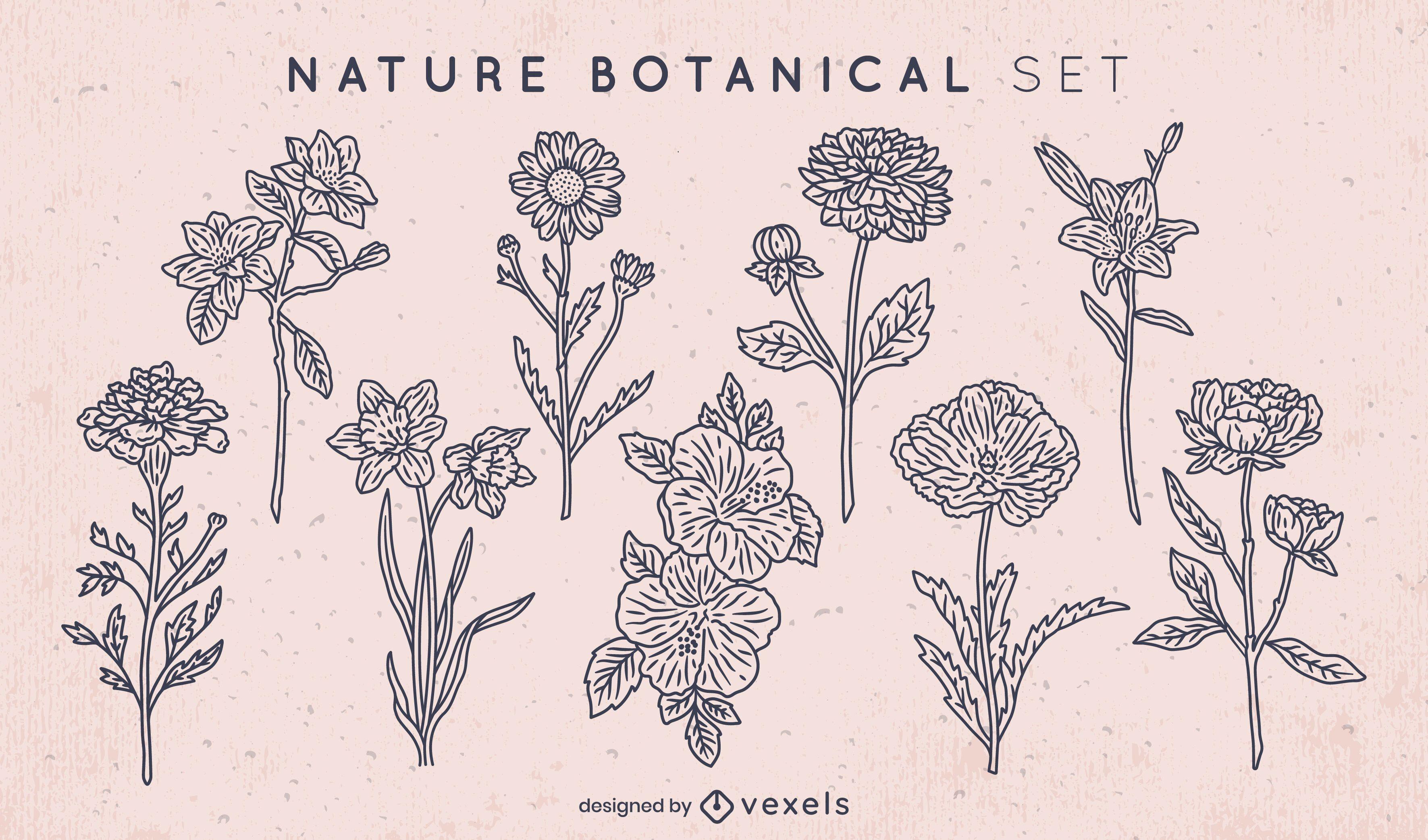 Conjunto de flores de arte lineal