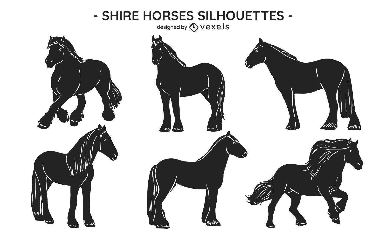Poses de animales salvajes de caballo conjunto recortado