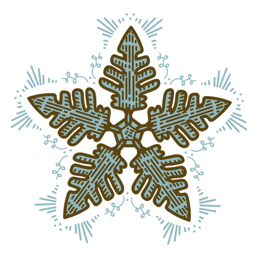 Shiny snowflake color stroke