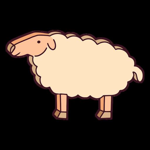 Cardboard sheep color stroke