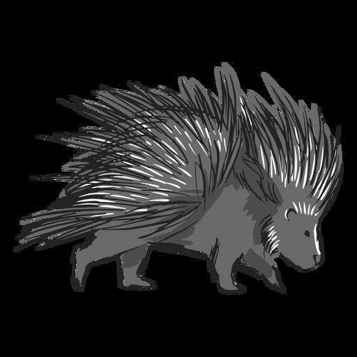 Porco-espinho - 1