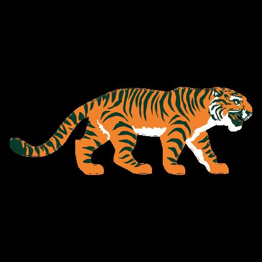 AnimalPrint - 19