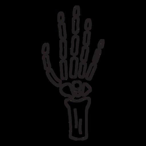 Skeleton hand stroke
