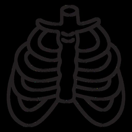Anatom?a-?rganos-Cuaderno Contorno-ViniloStroke - 7
