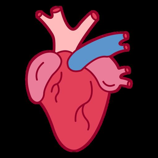 Human heart color stroke