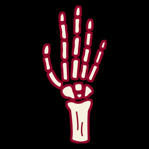 Skeleton hand color stroke