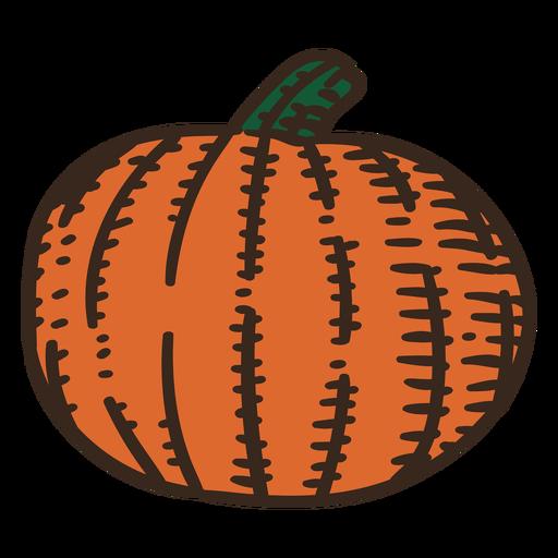 Pumpkin ingredient color stroke