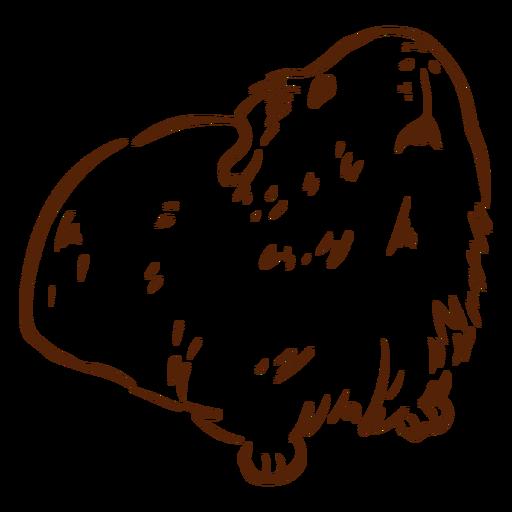 Dibujado a mano conejillo de indias - 1