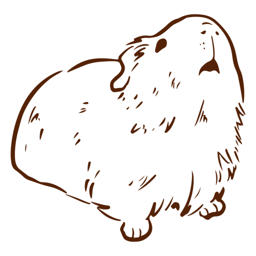 Guinea pig looking up doodle