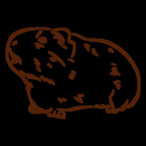 Side guinea pig doodle