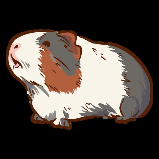 Side guinea pig illustration