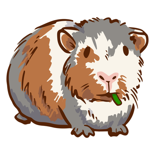 Guinea pig illustration with leaf in mouth