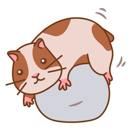 Meerschweinchen_svg - 2