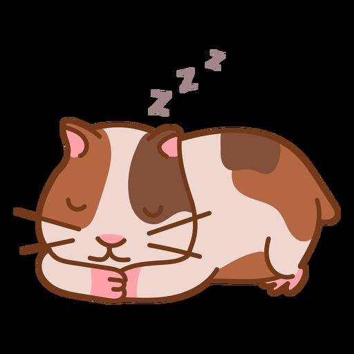Sleeping cute hamster color