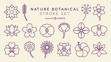 Conjunto de trazos botánicos de flores mínimas