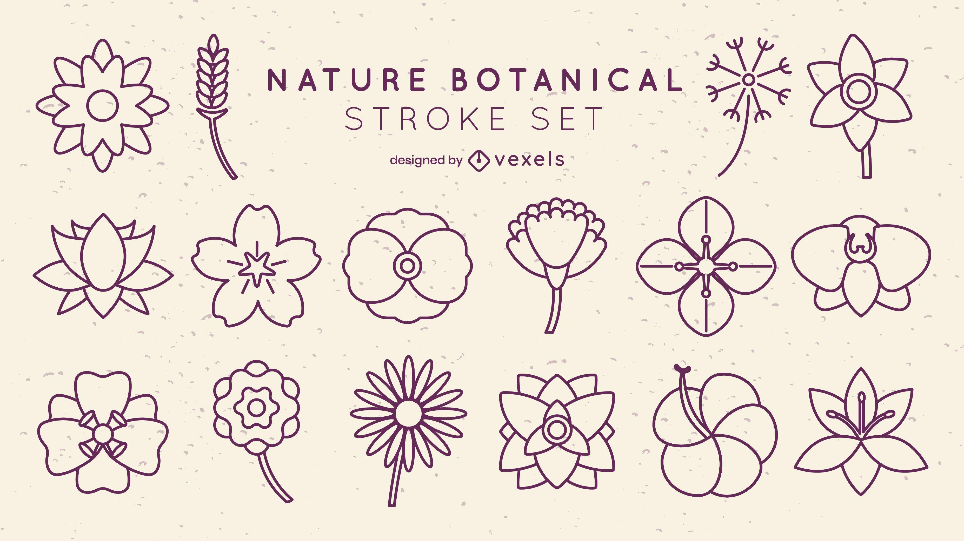 Conjunto de pinceladas botânicas de flores mínimas