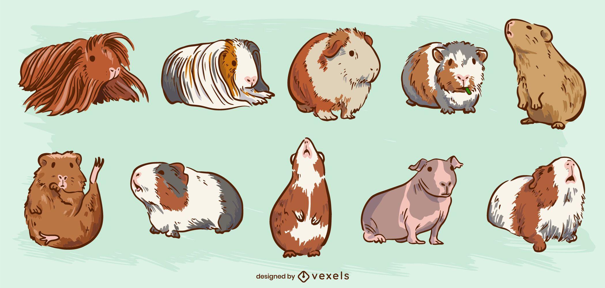 Guinea pigs cute hairy animal set