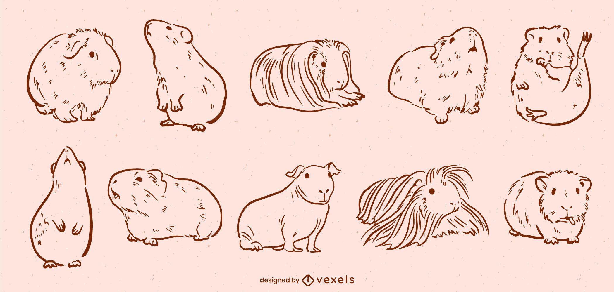 Guinea pigs cute animal line art set