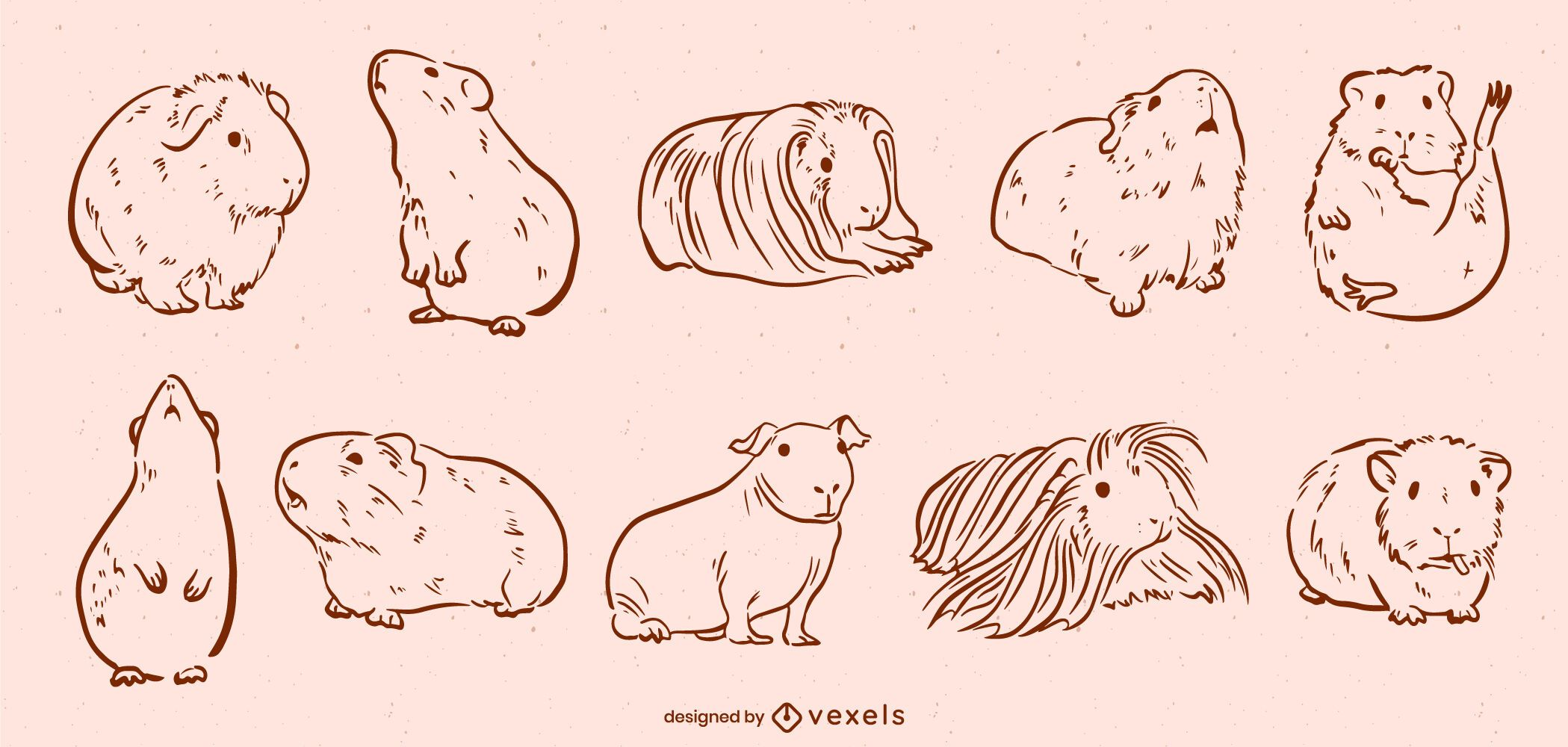 Meerschweinchen süßes Tier Strichzeichnungen Set