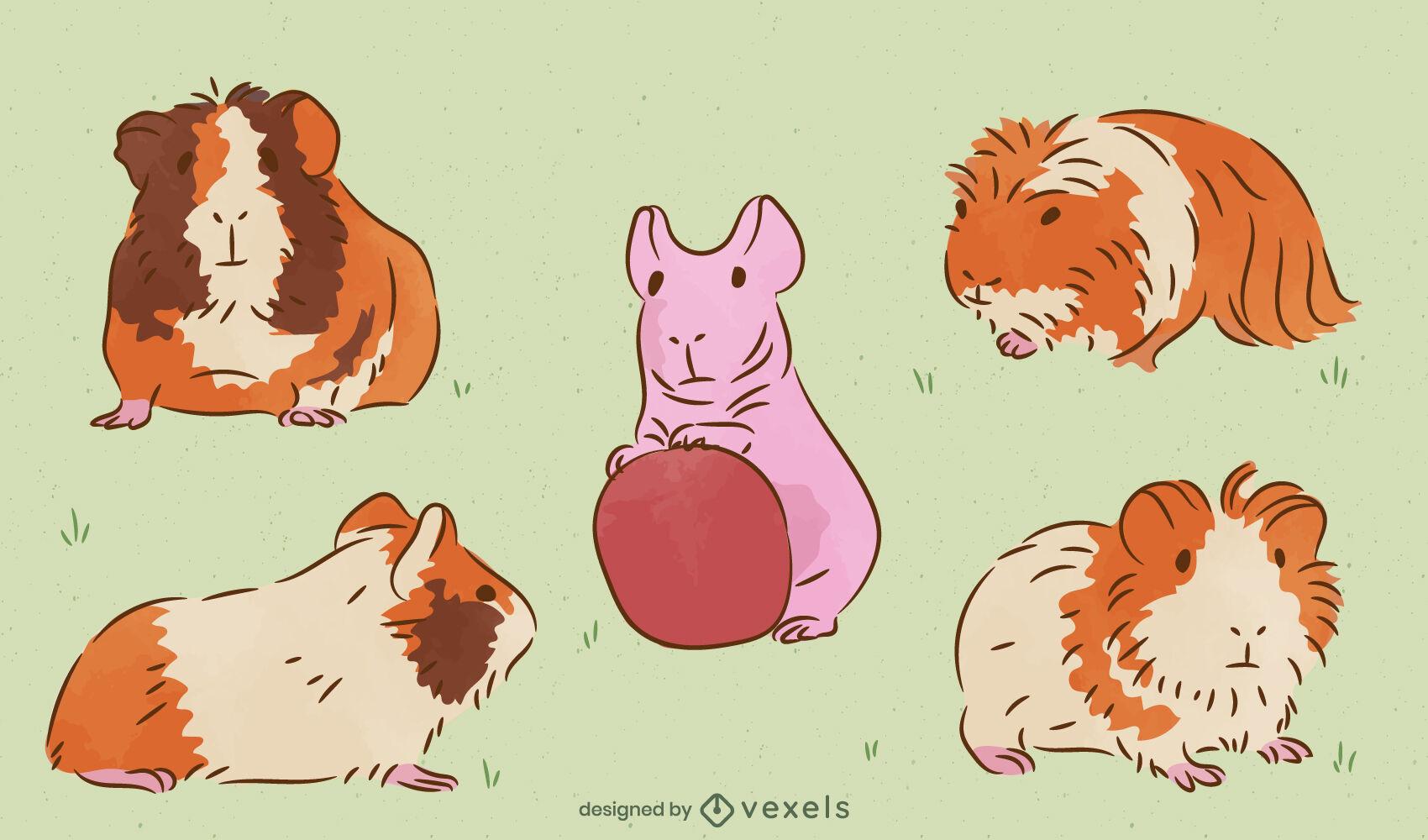 Conjunto de animais de estimação de porquinhos-da-índia