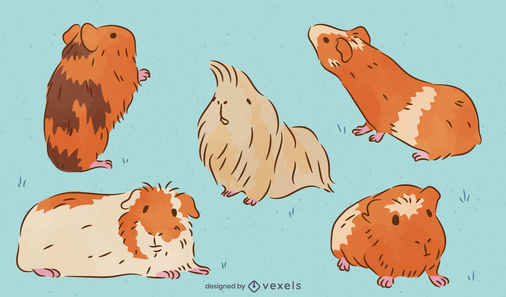 Cute guinea pigs pet animals elements set