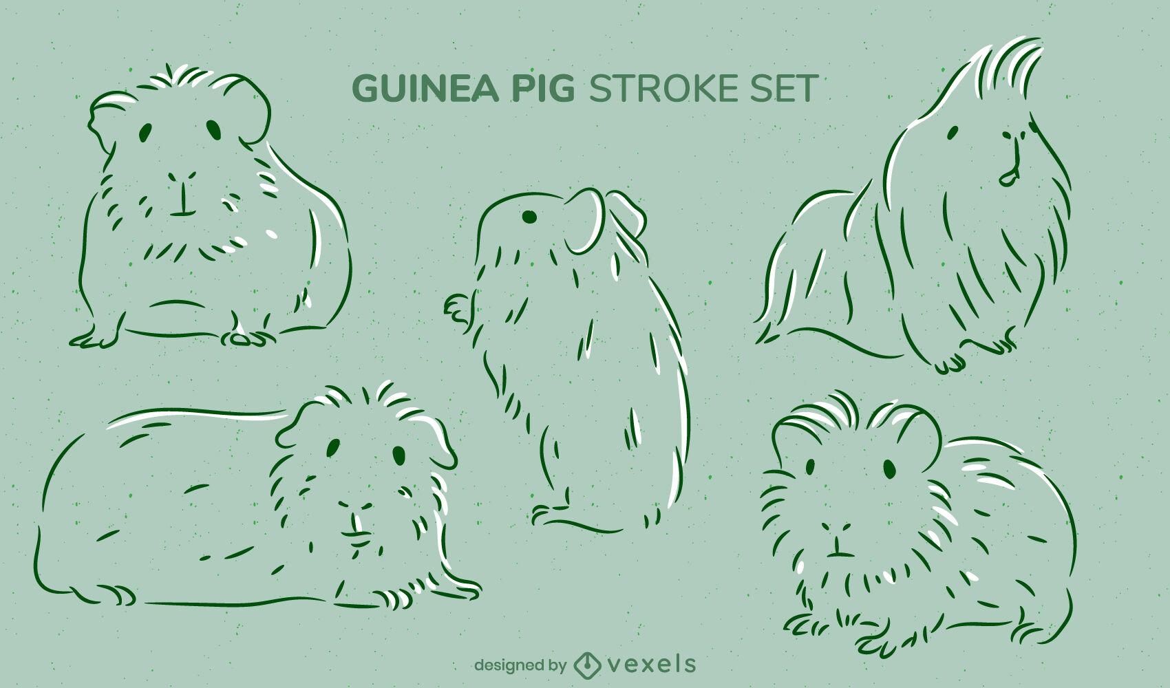 Conjunto de golpes de animais roedores cobaias