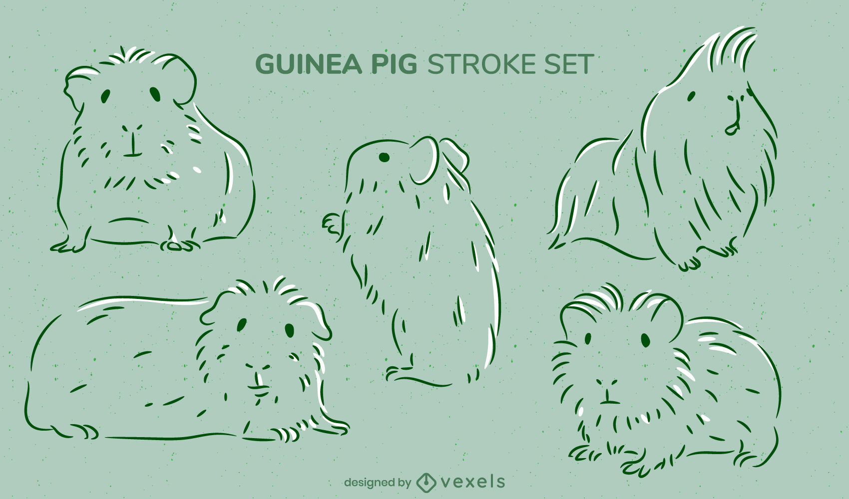 Guinea pigs rodent animals stroke set