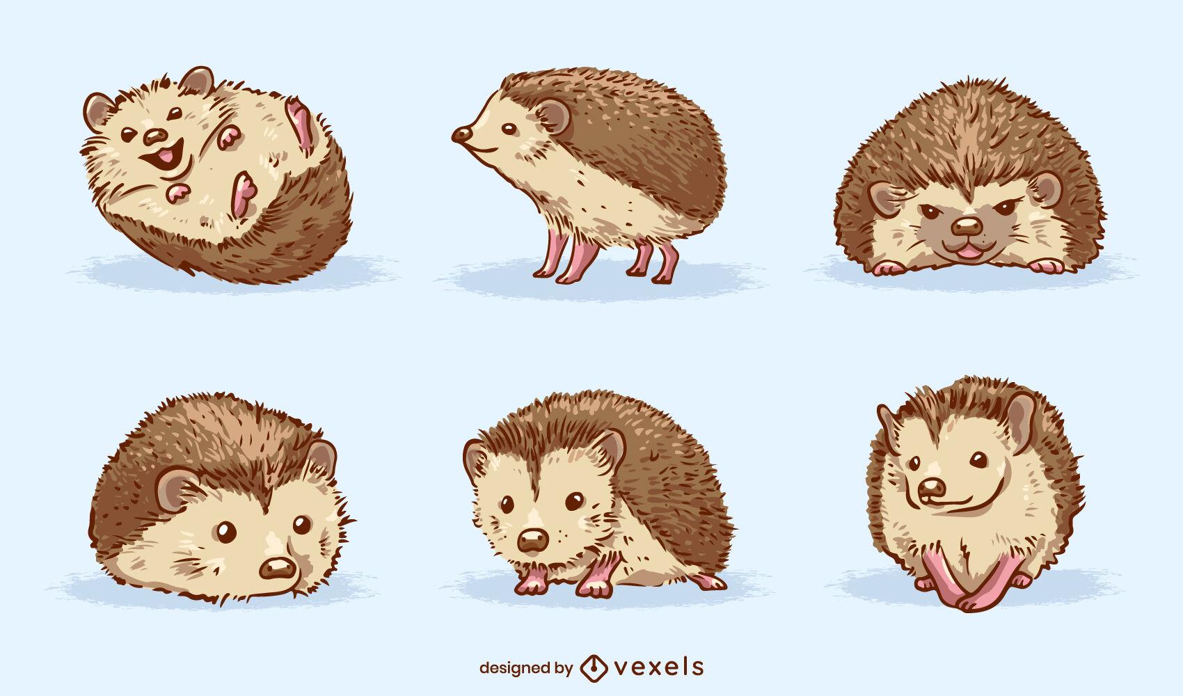 Conjunto de animal mascota adorable erizo